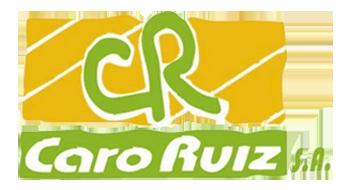 Caro Ruiz